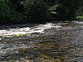 Aysgarth upper falls - geograph.org.uk - 1409560.jpg