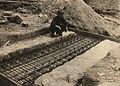 BASA-157K-1-901-83-Septemvri-Dobrinishte narrow gauge line, 1931.JPG