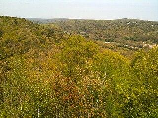 Mattatuck State Forest