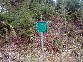 Babický les -důlní pozůstatky 1.JPG