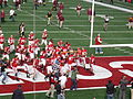 Badgers players celebrate win over Golden Gophers 2012.jpg