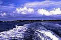 Bahamas 1989 (483) Abaco Man-O-War Cay (24364007844).jpg