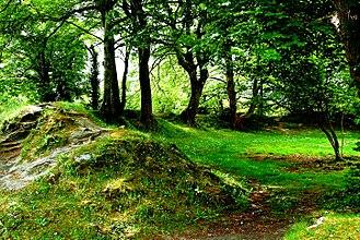 Ballyallaban ringfort - Image: Ballyallaban Ring Fort (8) geograph.org.uk 3074975