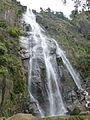 Bambarakanda Falls-Sri Lanka (3).jpg