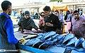 Bandar Abbas Fish Market 2020-01-22 17.jpg