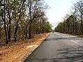 Bandipur Tiger Reserve - panoramio (28).jpg