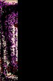 Baseball catcher patent.tif