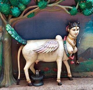 Kamadhenu Hindu goddess; Divine cow in Hinduism