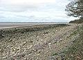 Beach below Carsluith Wood at low tide - geograph.org.uk - 1920309.jpg
