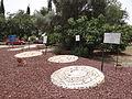 Beit Keshet garden (2).JPG