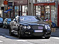 Bentley Wald Continental GTC Black Bison Edition - Flickr - Alexandre Prévot (11).jpg