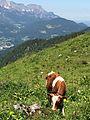Berchtesgaden IMG 4996.jpg