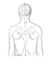 Bertillon - Identification anthropométrique (1893) 362 n&b.png