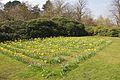 Biddulph Grange 2015 005.jpg