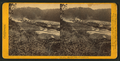 Big River Mills, Mendocino, by John P. Soule.png