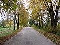 Bikūnai 28402, Lithuania - panoramio (15).jpg