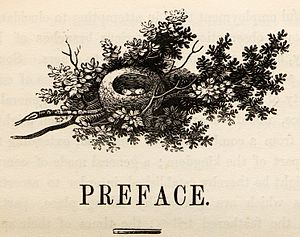 Charlton Nesbit - Wood-engraving by Charlton Nesbit of a bird's nest, heading the Preface of Thomas Bewick's A History of British Birds, Volume 1, 1797.