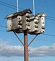 Birdhouse (92037).jpg