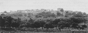 Al-Birwa - Al-Birwa from a distance, 1928