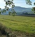 Blick ins nebelverhangene Maintal - panoramio (1).jpg