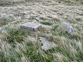 Blocks of stone on Cook's Study Hill, Dunford - geograph.org.uk - 933777.jpg