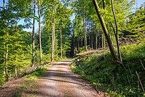 Blomberg - 2015-05-15 - LIP-054 (8).jpg