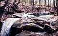 Blue Hen Falls 2.jpg