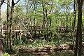 Blue Hole Trail pedestrian bridge views from the Head Spring Trail.jpg
