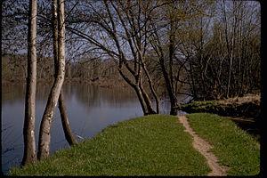 Blue Ridge Parkway BLRI9281.jpg