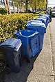 Blue bins on the sidewalk (49159203891).jpg