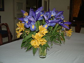 Blue iris and yellow alstroemeria (26116771).jpg