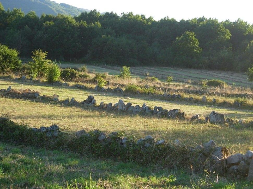 Bocage en Galicia