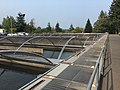 Bonneville Fish Hatchery 2017 1.jpg