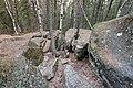 Bonsai Boulders Kananaskis Alberta Canada (16236715764).jpg