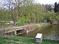 Borovinský rybník, hráz.jpg