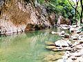 Bosco di Frasassi Ancona fiume e pesci a fior d'acqua.JPG