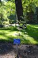 Botanical garden T.U.Delft in 2015 02.JPG