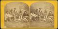 Box-Ka-ne-sha-hash-ta-Ka (or Julius Meyer), from Robert N. Dennis collection of stereoscopic views.png
