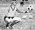Branko Elsner.jpg