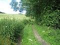 Bridleway east of Chicksgrove Wood - geograph.org.uk - 903876.jpg