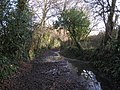 Bridleway heading southeast from Chudleigh Knighton - geograph.org.uk - 1653053.jpg