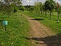 Bridleway in Birchwood Park Golf Course - geograph.org.uk - 1279395.jpg