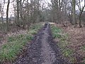 Bridleway to Slinfold - geograph.org.uk - 1713543.jpg