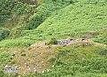 Broch near Ceann Ousdale - geograph.org.uk - 883685.jpg