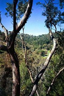 Brown Hill Creek river in South Australia, Australia