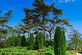 Bryza - panoramio.jpg