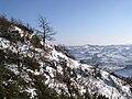 Budrio - panoramio.jpg