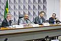 CDH - Comissão de Direitos Humanos e Legislação Participativa (26049008771).jpg