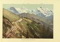 CH-NB-Souvenir de l'Oberland bernois-nbdig-18025-page041.tif