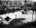 COLLECTIE TROPENMUSEUM Twee mannen bekijken malaria-haarden in een bos te Dakoaha Enggano Benkoelen Sumatra TMnr 10006739.jpg